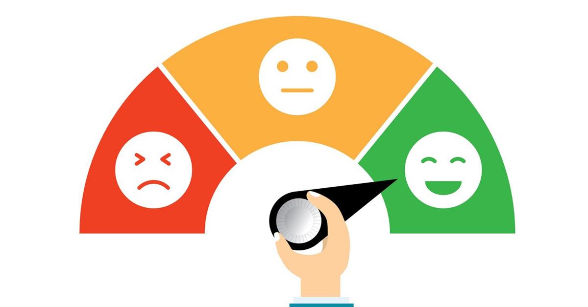 Teho Ropes customer survey